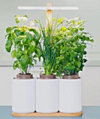jardinage_4p
