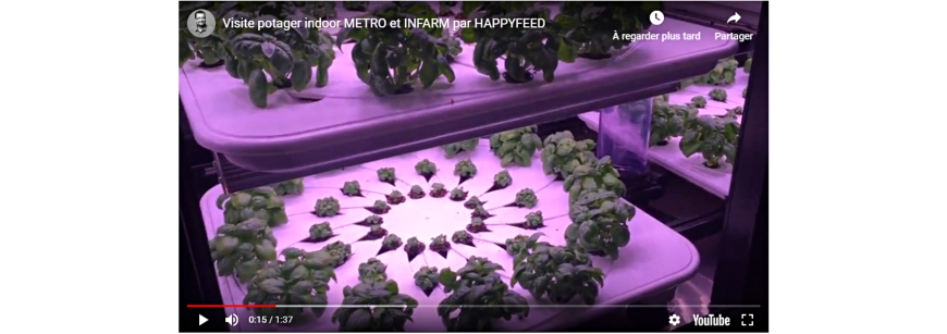 video potager urbain Happyfeed